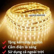 Đèn LED dây 5050 5M ống nhựa 220v tặng kèm 1 dây nguồn