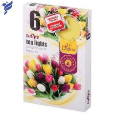 Hộp 6 nến thơm Tea lights Admit Tulips ADM7746 (Hương hoa tulip)