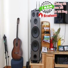 LOA CÂY ĐỨNG Bradwell F-6800 Japan BH2 năm