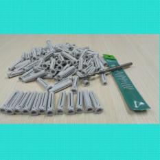 Combo gồm 100 cái tắc kê nhựa cao cấp Friulsider X1- 6×30 (SX tại Ý) + 1 Mũi khoan Heller 6ly (SX tại Đức)