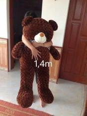 Gấu bông teddy khổ vải 1m4