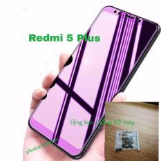 Xiaomi Redmi 5 Plus cường lực tím chống tia xanh hại mắt tặng keo chống hở mép ( không full )