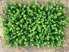 Thảm cỏ tai chuột nhựa pvc trang trí, thảm cỏ nhân tạo 40 x 60cm