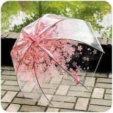 Ô dù trong suốt hoa văn 3D.