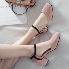 Giày cao gót bít mũi nhung viền 5p vuông Rosa