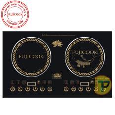 Bếp đôi âm Fujicook HC 579