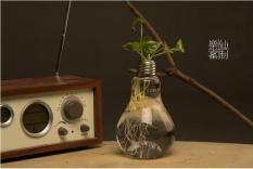 Lọ thủy tinh hình bóng đèn điện chuyên dùng trang trí, trồng thủy sinh