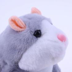 Chuột Hamster biết nói – Talking Hamster