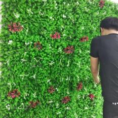Cỏ treo tường Tai Chuột Hoa To – Bộ 5 tấm