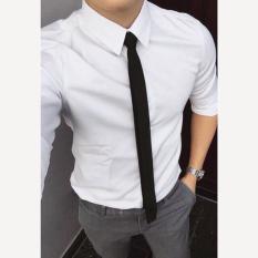 Cà vạt Hàn quốc bản 5cm trẻ trung