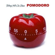 Đồng hồ tối ưu làm việc hiệu quả Pomodoro (Quả cà chua)