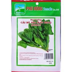 Hạt giống cải bó xôi Italia PN – 20g