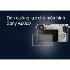 Dán cường lực cho màn hình Sony A6000 A6300 A6500