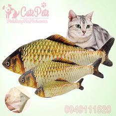 Đồ chơi Cá chép bông cho mèo 4 size – CutePets