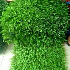 COMBO 10 Tấm cỏ treo tường TAI CHUỘT
