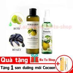 Bộ trị rụng tóc dầu gội vỏ bưởi Herbario và Dưỡng tóc Pomelo tặng 1 son dưỡng Cocoon