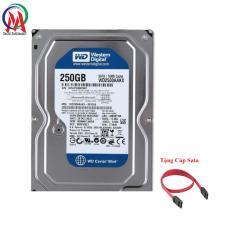 Ổ CỨNG PC 250GB BH 24 THÁNG Tặng Cáp Sata
