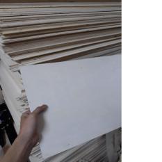 Gỗ diy gỗ trắng 2 mặt 2 tấm 300x600x3mm