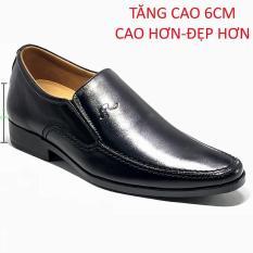 giày tăng chiều cao mũi nhọn LTC18