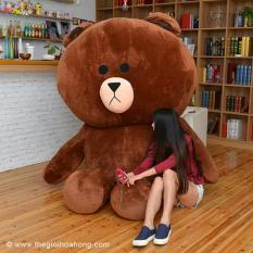 Gấu bông Brown khổng lồ 1m4