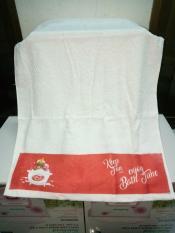 Combo 2 khăn Cotton mềm mịn, thắm hút nhanh ( 80x40cm)