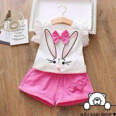 bộ thỏ cho bé gái