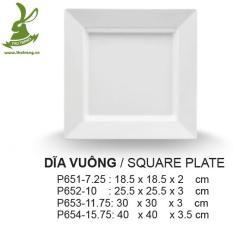 Bộ 2 Dĩa vuông lớn đựng thức ăn buffet nhựa cao cấp Thái Lan 30cm SRITHAI SUPERWARE P653-11.75 W