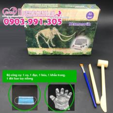 Khảo Cổ Khủng Long Mamut Dinosaur TẶNG 1 Set công cụ