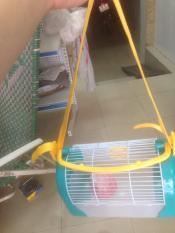 Lồng hamster xách tay