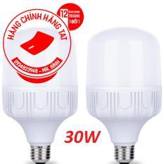 Bộ 2 bóng đèn Led 30W cao cấp ánh sáng trắng