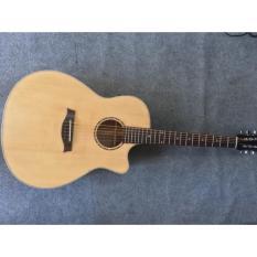 Guitar hồng đào việt