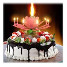 Nến sinh nhật 3D nở hoa, phát nhạc,
