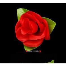 Đồ chơi ảo thuật đơn giản : diêm thành bông hồng + dvd hướng dẫn miễn phí