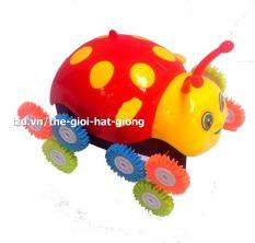 Đồ chơi Xe nhào lộn hình con bọ cánh cam (Xài pin)