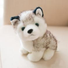 Gấu bông, thú nhồi bông – Chó bông husky