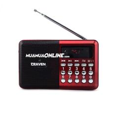 Loa Nghe Nhạc USB Thẻ Nhớ FM Craven CR-26