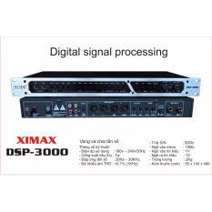 Đầu kara vang và chia tần số DSP-3000