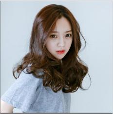 [TẶNG LƯỚI TRÙM] Tóc giả nữ Hàn Quốc cao cấp có da đầu – TG1070 ( MÀU NÂU HẠT DẺ )