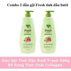 Combo 2 dầu gội Fresh tinh dầu bưởi và lá neem 550g – Hàng mới nhất