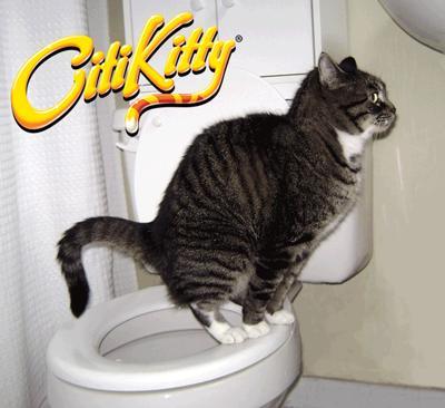 Bộ dạy mèo đi vệ sinh bồn cầu (LOẠI CÓ HỘP GIẤY) nắp bồn cầu cho mèo, huấn luyện mèo...