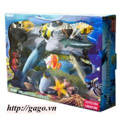 Bộ 12 sinh vật biển