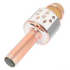 Micro karaoke kèm loa bluetooth wster ws-858