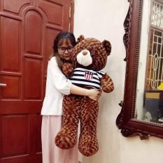 Gấu bông Teddy Cao Cấp khổ vải 1m Cao 80 màu Nâu hàng VNXK