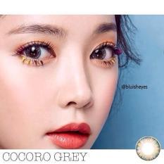 COMBO 2 : NƯỚC NGÂM + LENS Kính áp tròng – Lens XÁM TÂY Hàn Quốc Vassen