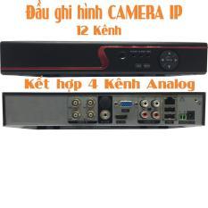 Đầu ghi hình cho camera IP Yoosee 12 kênh kết hợp 4 kênh analog chuyên dụng cho camera wifi