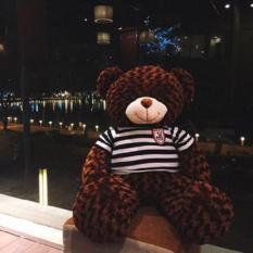 Gấu Bông Teddy Khổ vải 1m2
