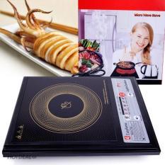 Bếp hồng ngoại easy home/ Mysuta