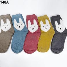 Phụ kiện giày vớ nữ len cao cổ (5 đôi) Vớ Store – A148