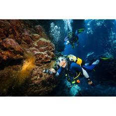 Bán Kính Lặn Biển, Kèm Ống Thở, Chân Vịt, Chất, Giá Cạnh TranhBán Kính Đi Biển, Ống Thở, Chân Vịt, Phân Phối Bởi SOCTHO Store