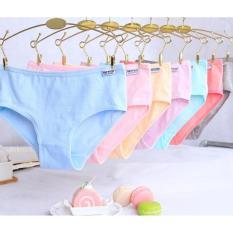 Sét 10 quần lót xuất Mỹ H.P PULO Bán lẻ giá sỉ
